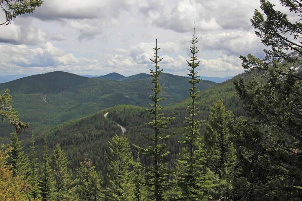 05-24-14 Sherman Pass - Columbia Mtn Hike (18)