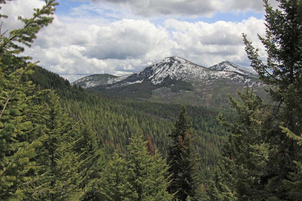 05-24-14 Sherman Pass - Columbia Mtn Hike (30)