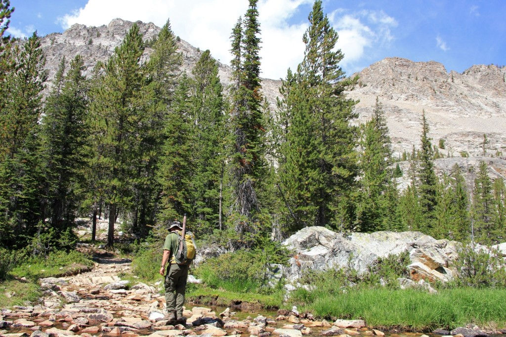 08-15-14 Sawtooths Alice Lake Hike (118)