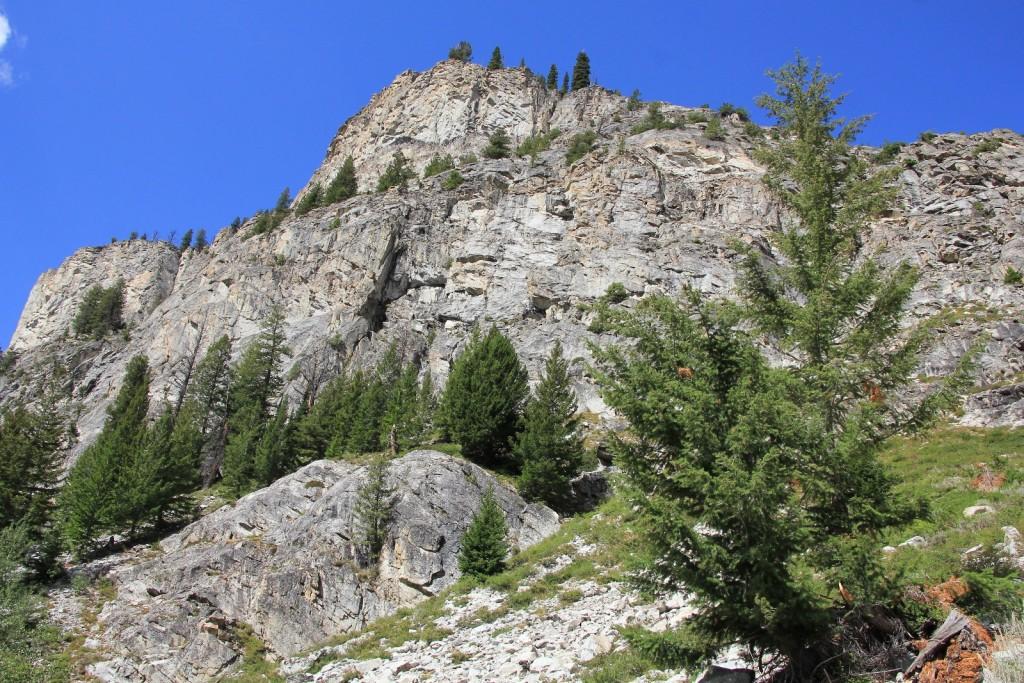 08-15-14 Sawtooths Alice Lake Hike (49)