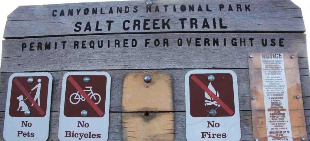 welcome to Salt Creek