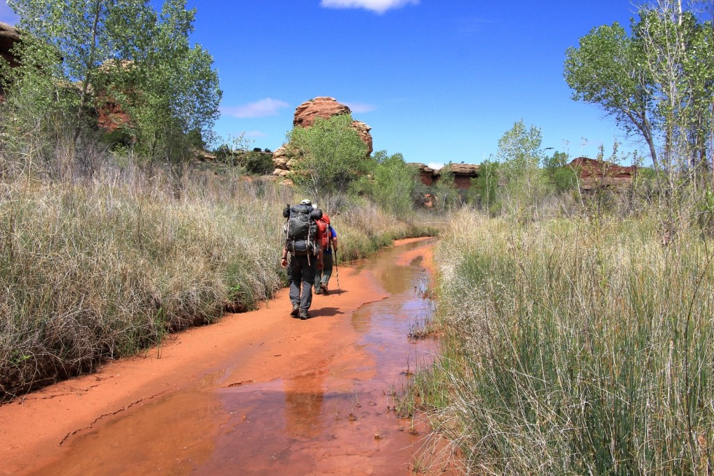 final stretch along Salt Creek
