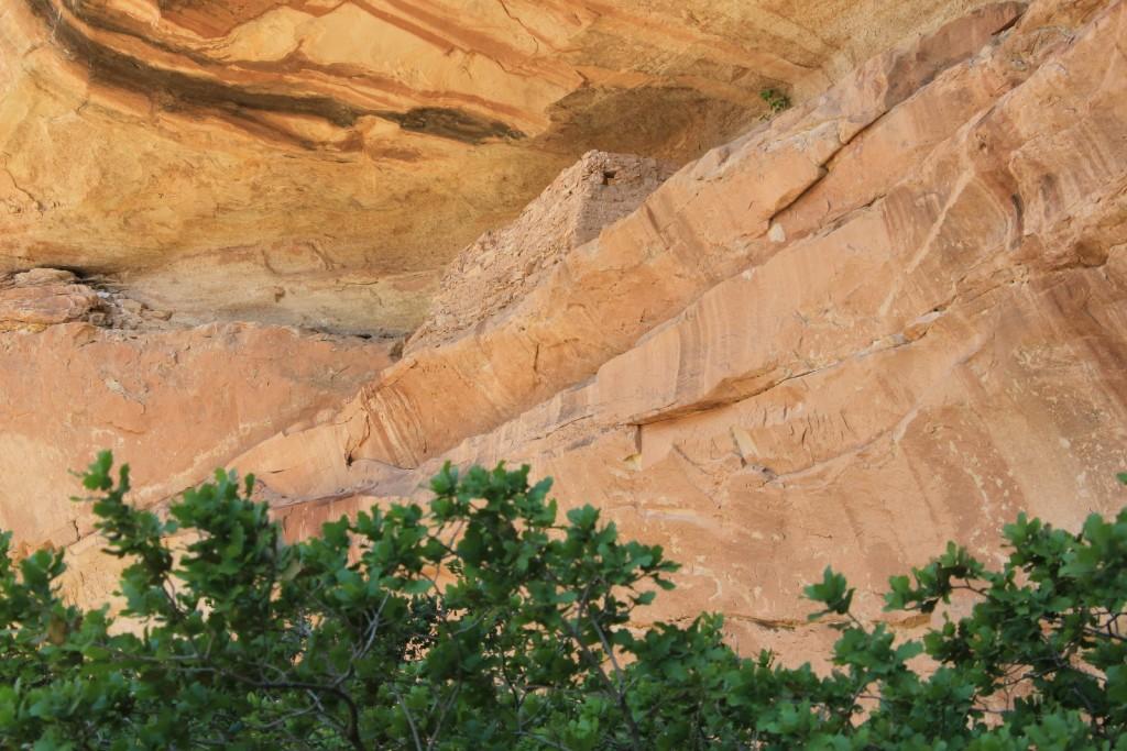 05-11-15 Comb Ridge explorations (69)