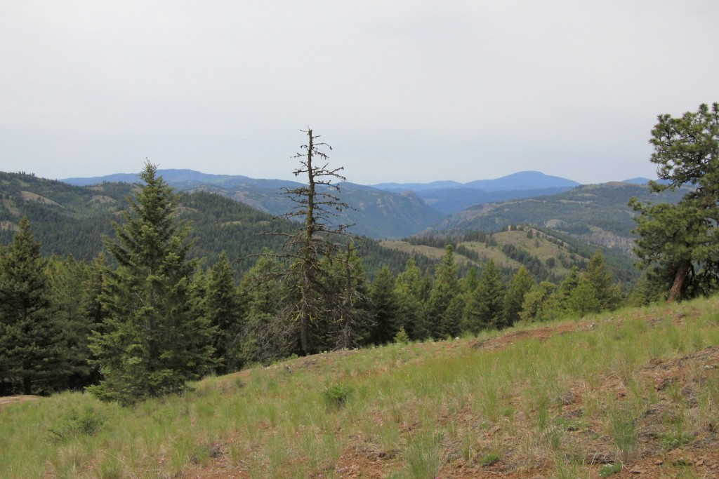 05-25-14 13 Mile Canyon Hike (66)