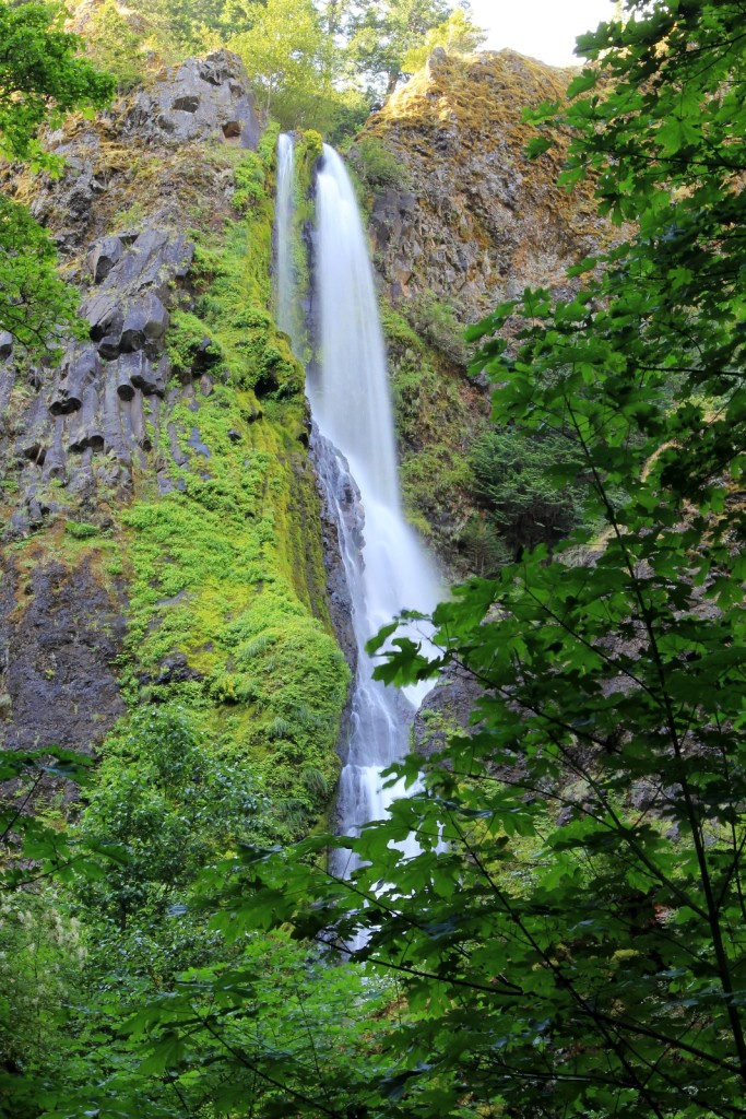 06-23-14 Gorge Falls Trip (2)