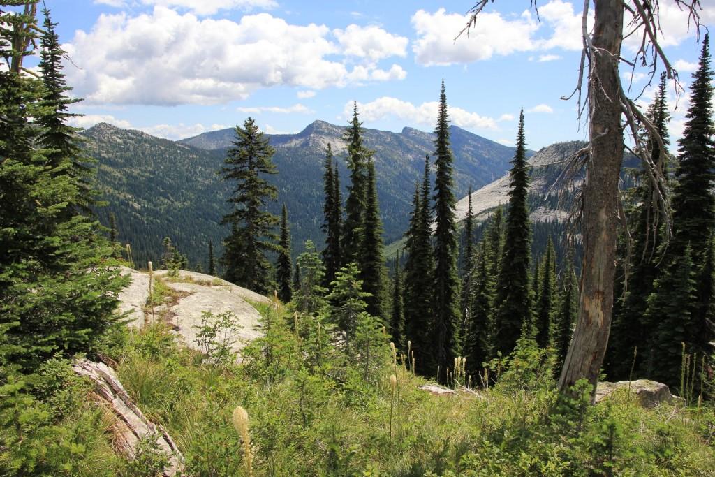 Harrison Lake trail views