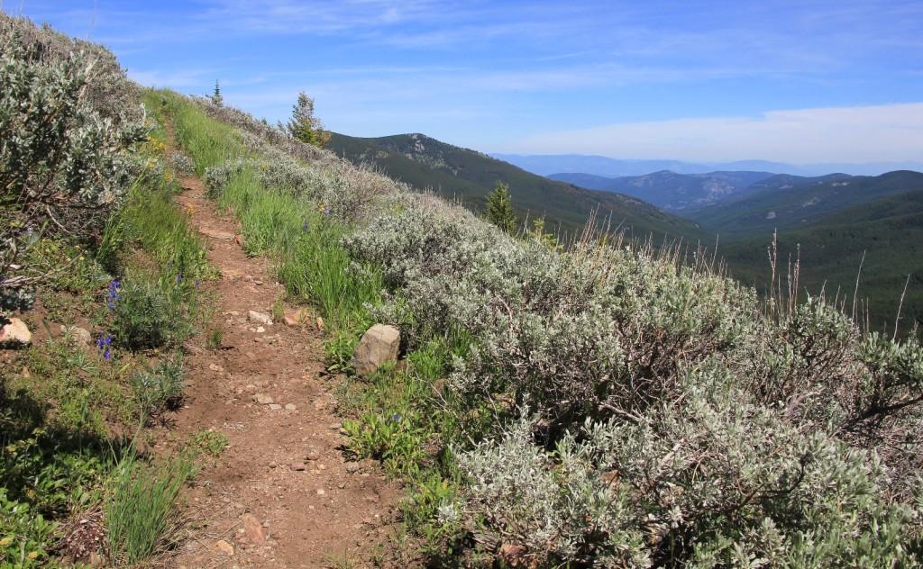 07-04-14 Wapaloosie Trail & camp (8)
