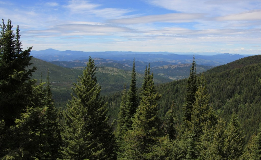 07-05-14 Columbia Lookout & camp (34)