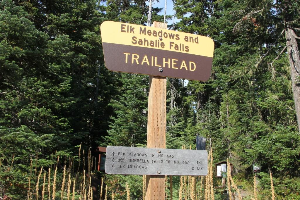 09-11-15 Mt. Hood (1)