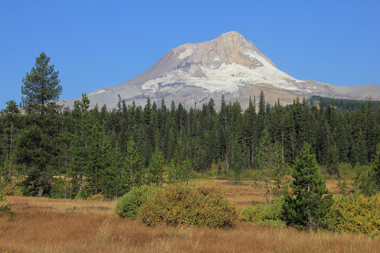 09-12-15 Mt. Hood Elk Meadows Gnarl Ridge (27)