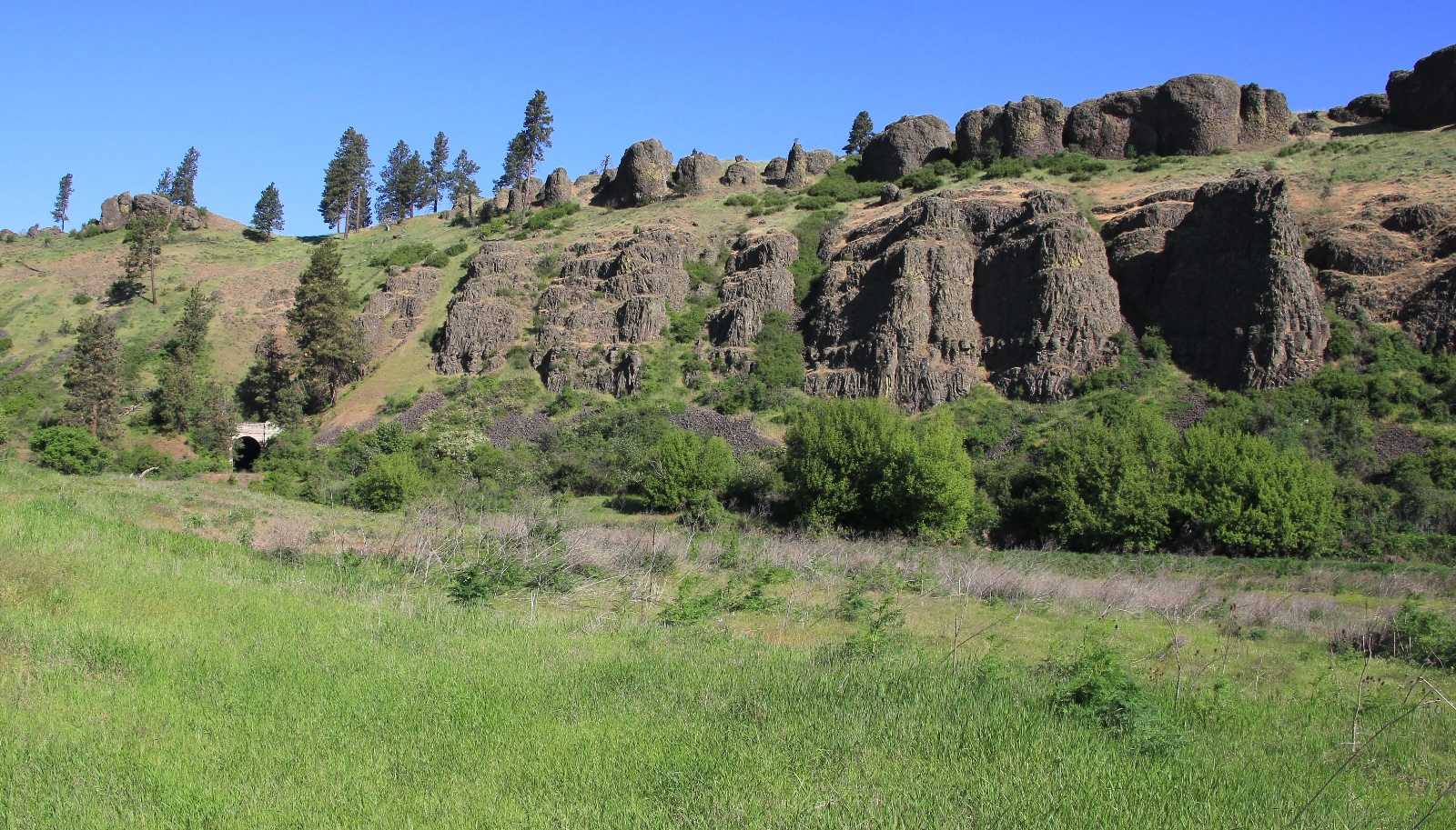 05-08-16 Colfax River Trail (34)