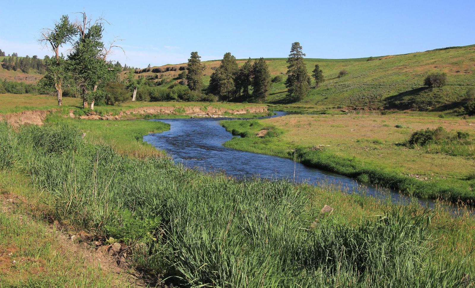 05-08-16 Colfax River Trail (8)