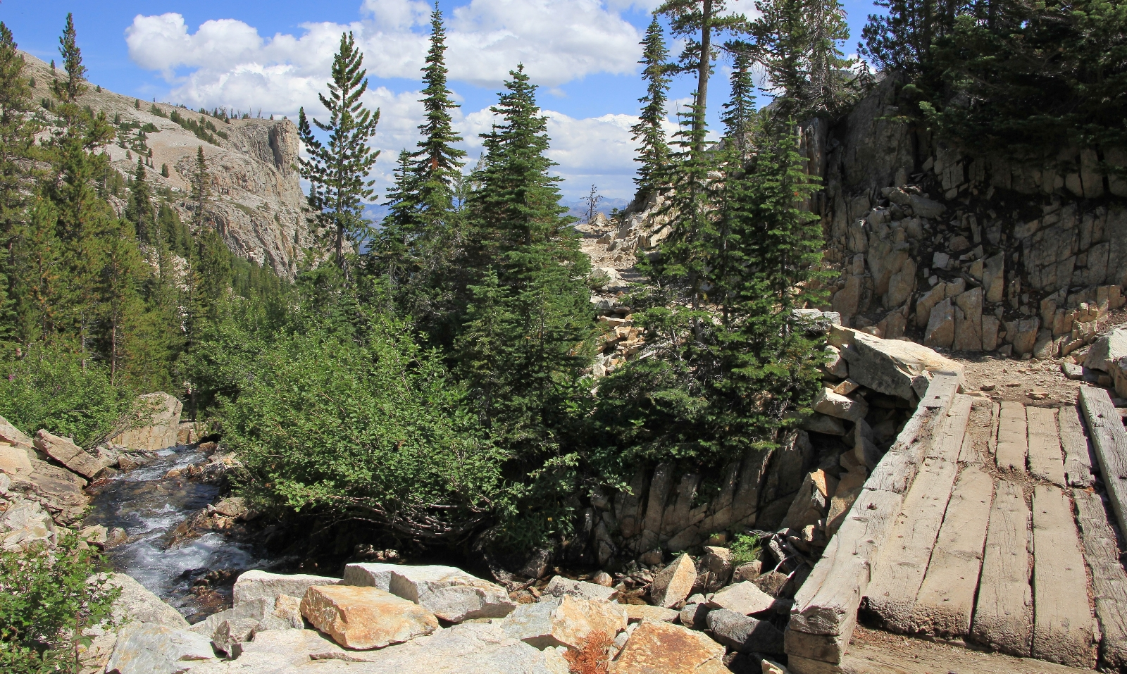 08-15-14 Sawtooths Alice Lake Hike (104)
