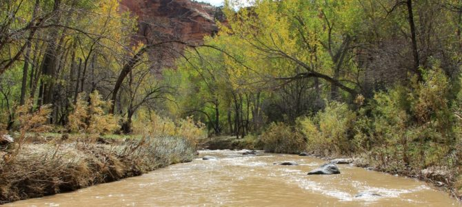 After the Flood: Escalante River Backpack day 2, Oct 2016