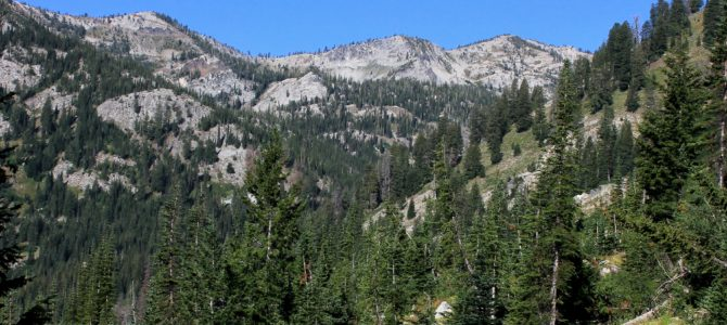 Oregon's Eagle Cap Wilderness: Main Eagle Backpack day 4 (return to civilization), July 2018