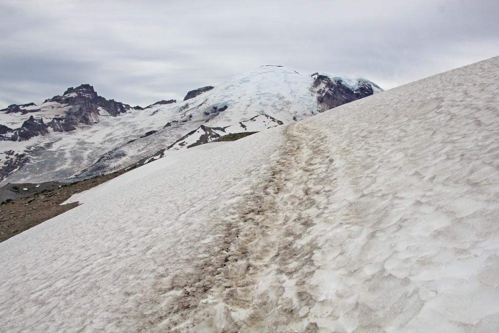 07-18-14 Mt. Rainier Trip (36)