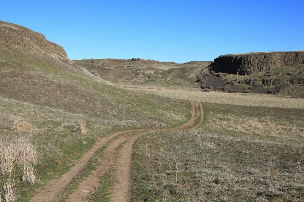 the trail follows this old rancher road
