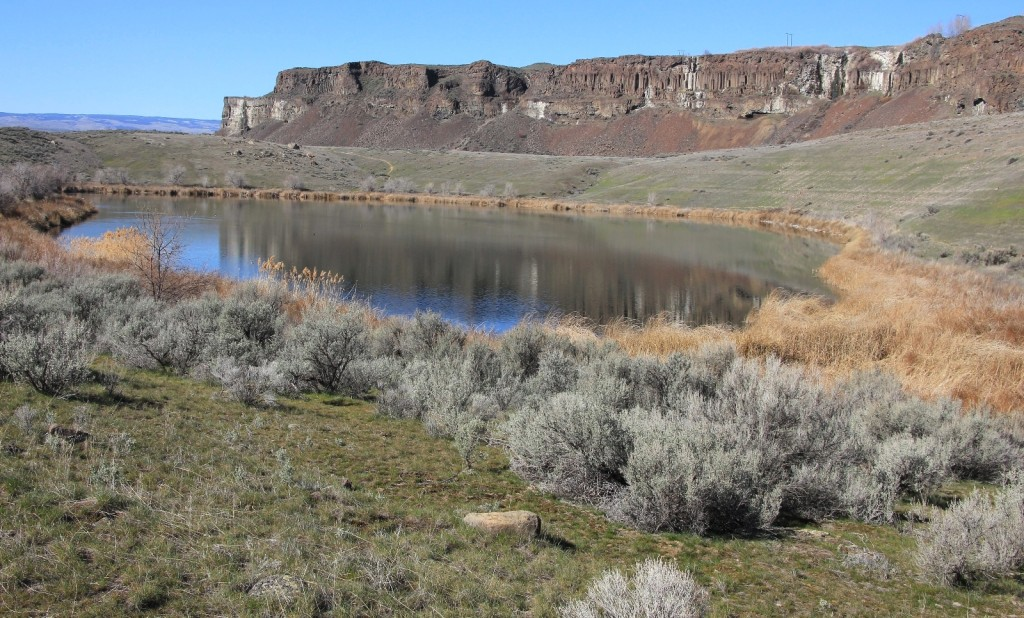 03-07-15 Ancient & Dusty Lakes (34)