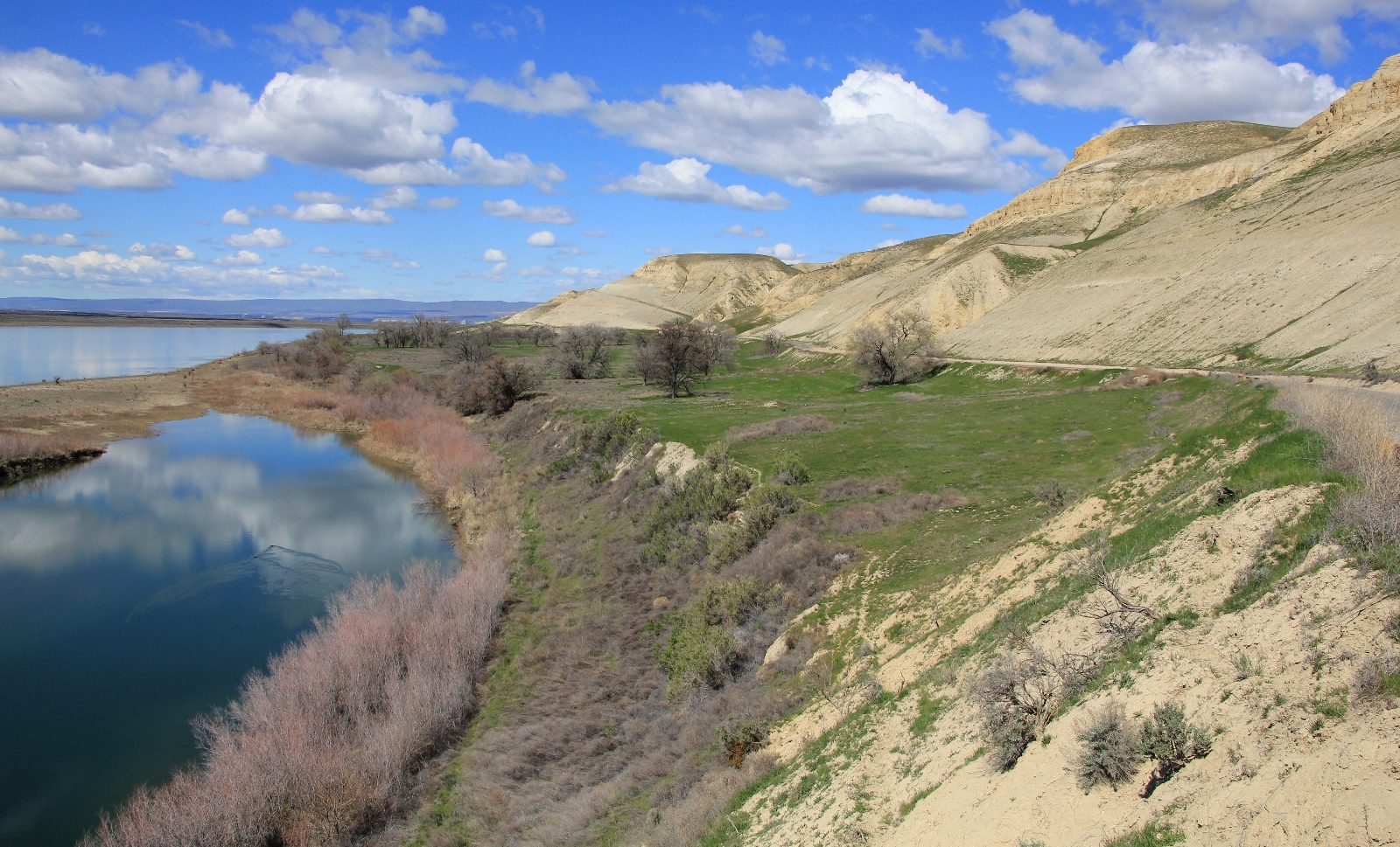 03-25-16 White Bluffs South (29)