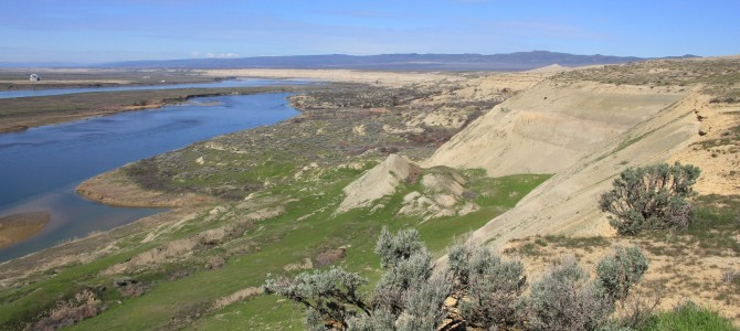Hanford Reach National Monument: White Bluffs North & South, March 2016