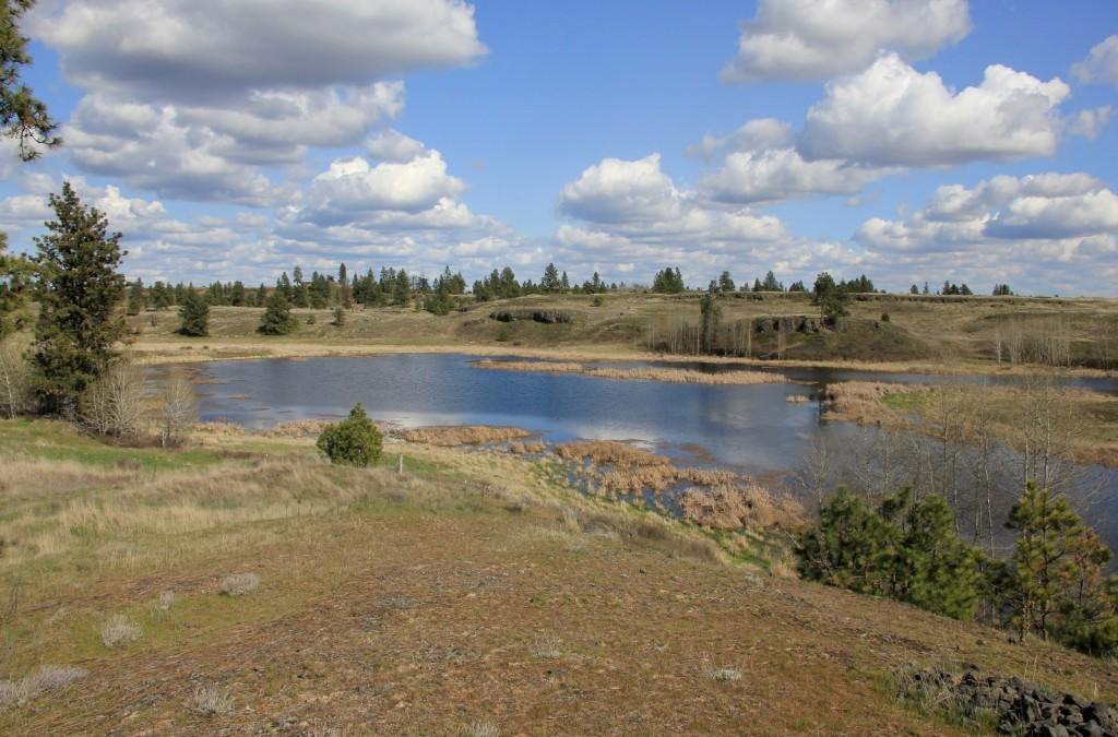 04-04-15 Hog Lake (63)