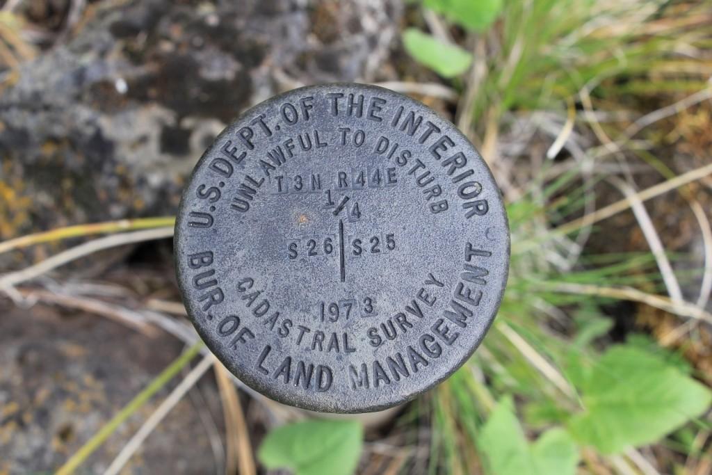 05-03-14 Chico - Davis Creek hike (4)