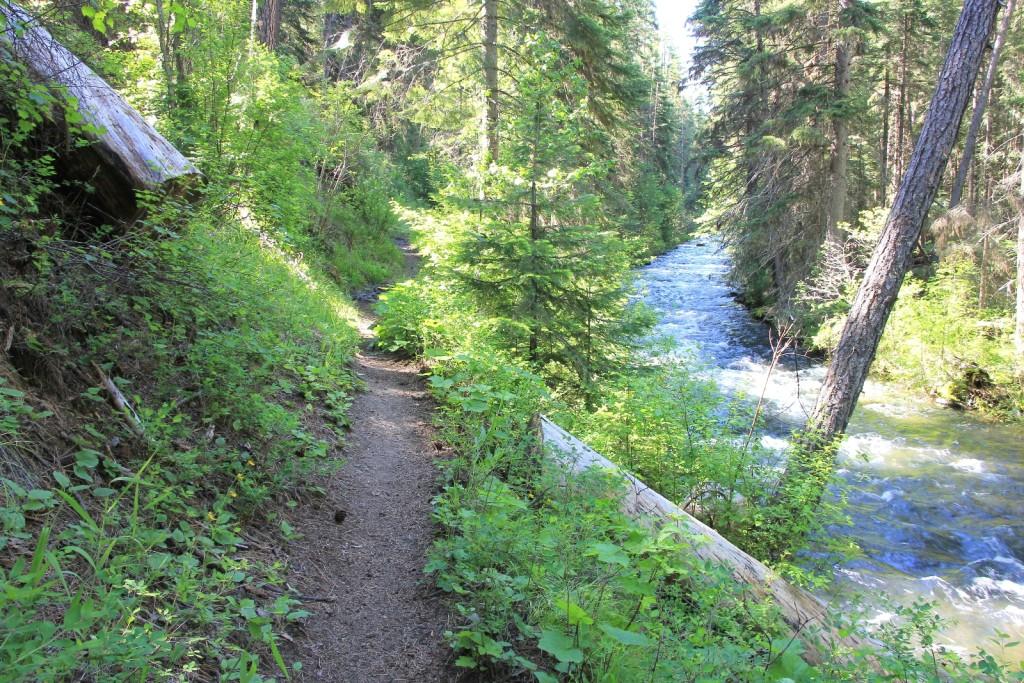 06-07-15 Bear Creek (14)