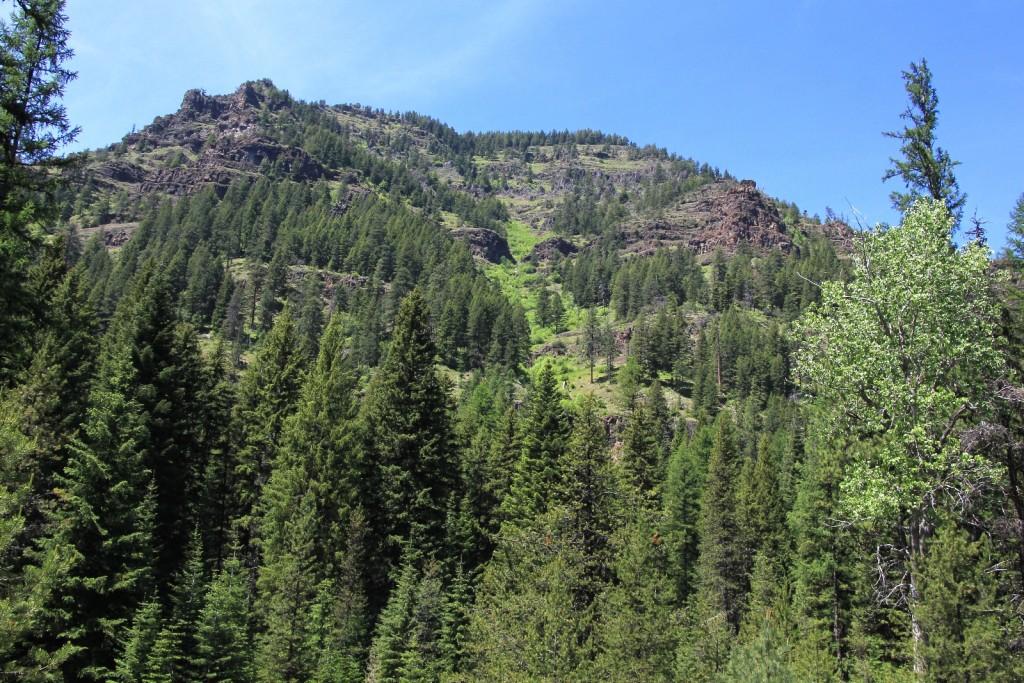 06-07-15 Bear Creek (35)