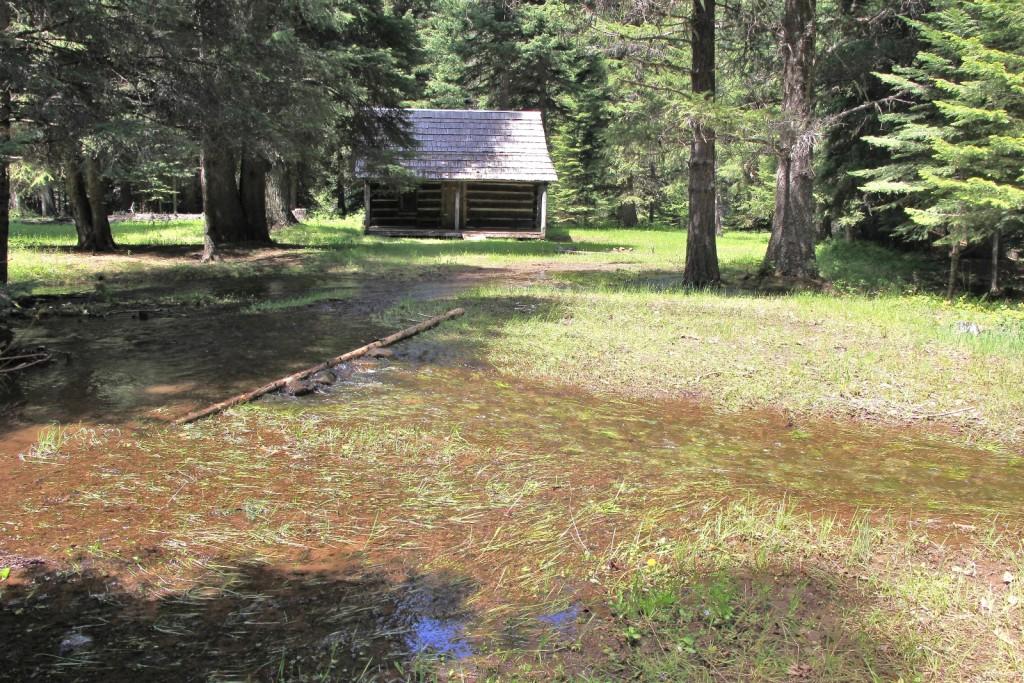 06-07-15 Bear Creek (46)