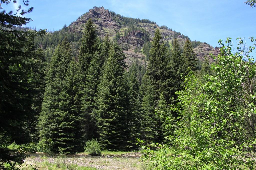 06-07-15 Bear Creek (54)