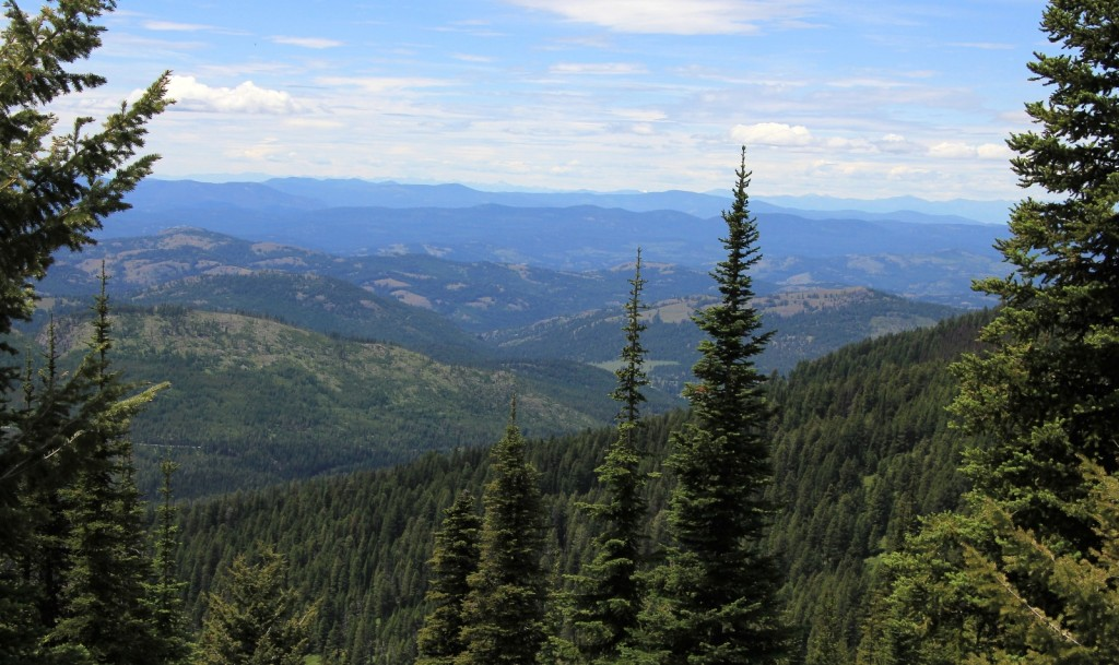 07-05-14 Columbia Lookout & camp (59)