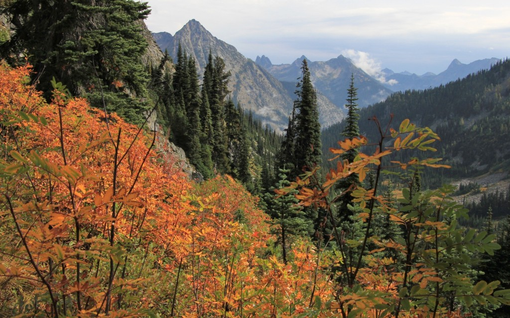 09-22-14 Maple-Heather Pass trail (35)