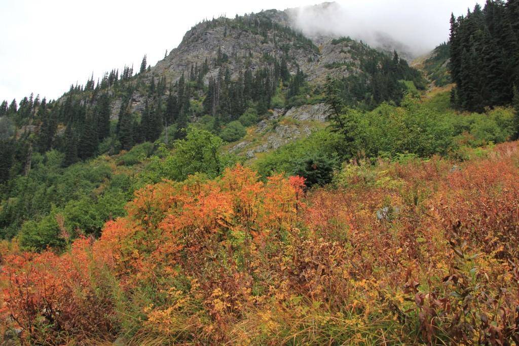 09-22-14 Maple-Heather Pass trail (7)