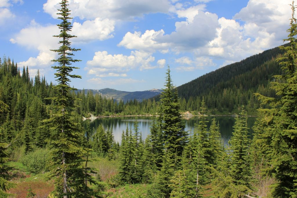 07-07-12 Stevens Lakes hike (35)
