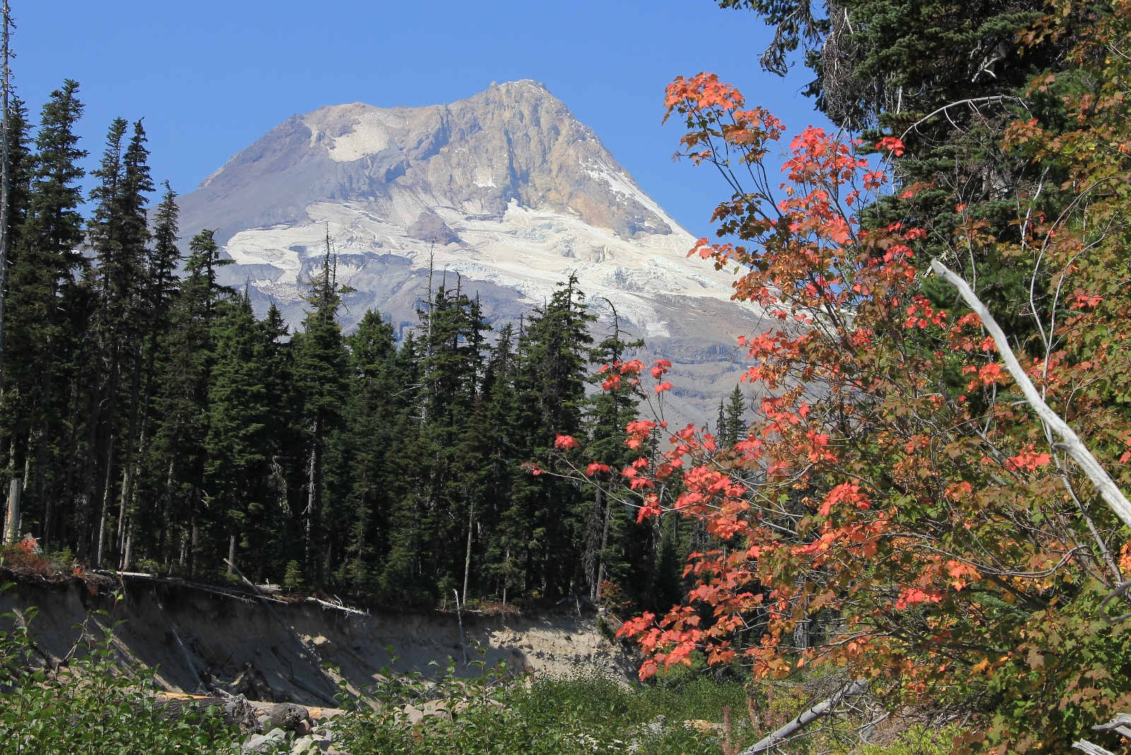 09-12-15 Mt. Hood Elk Meadows Gnarl Ridge (38)