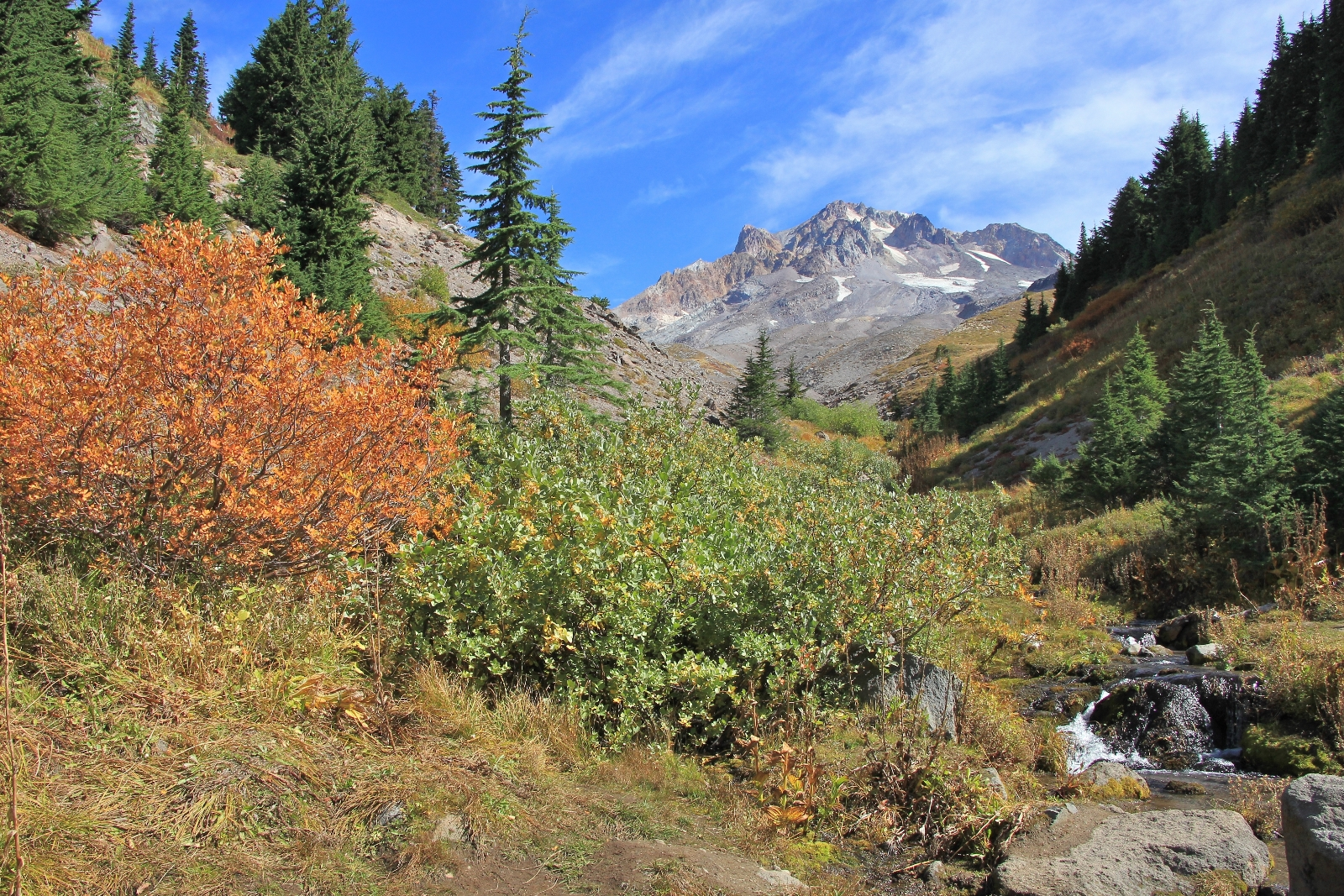 09-13-15 Mt. Hood Paradise Ridge hike (101)