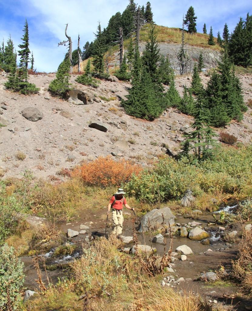 09-13-15 Mt. Hood Paradise Ridge hike (109)