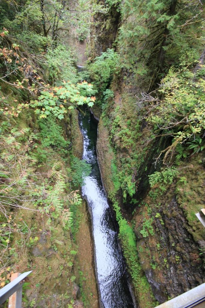 09-14-15 Eagle Creek hike (61)