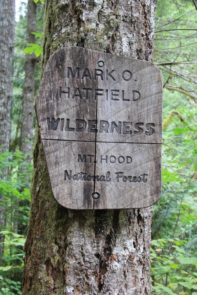 09-14-15 Eagle Creek hike (73b)