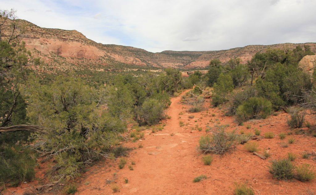 10-09-13 Sand Canyon, CO (105)