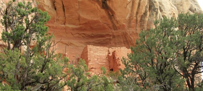 SW Colorado's Canyons of the Ancients National Monument: Sand Canyon Trail, Oct 2013