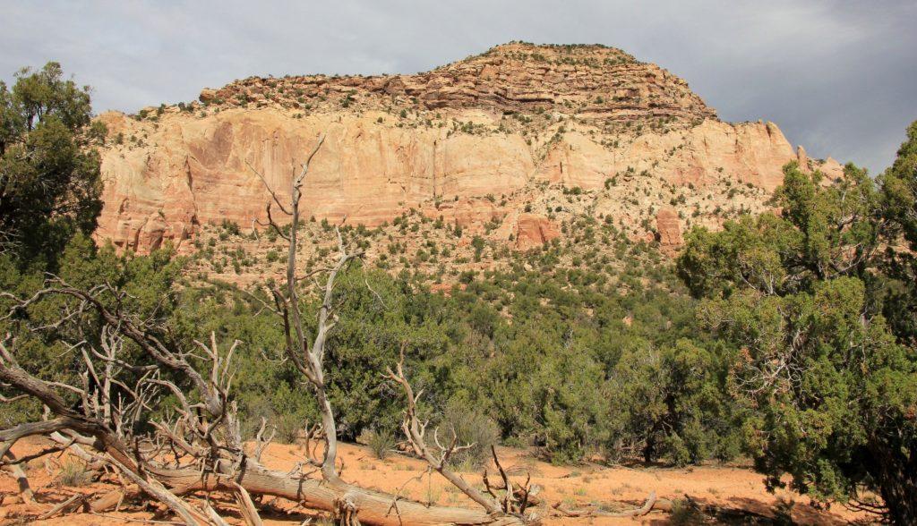 10-09-13 Sand Canyon, CO (88)