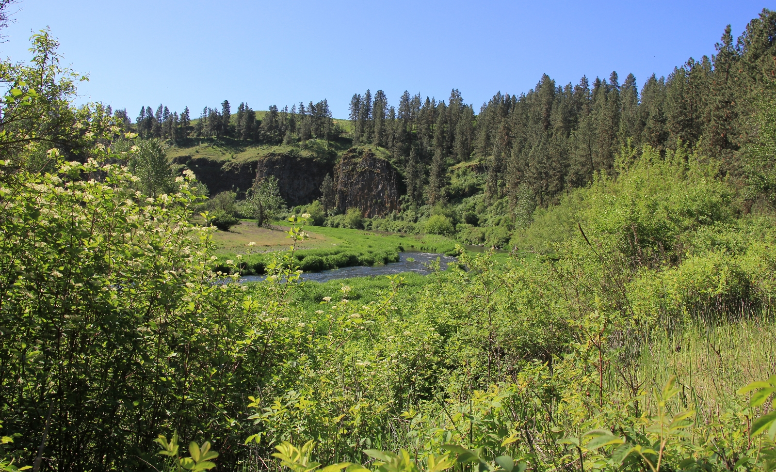 05-08-16 Colfax River Trail (42)
