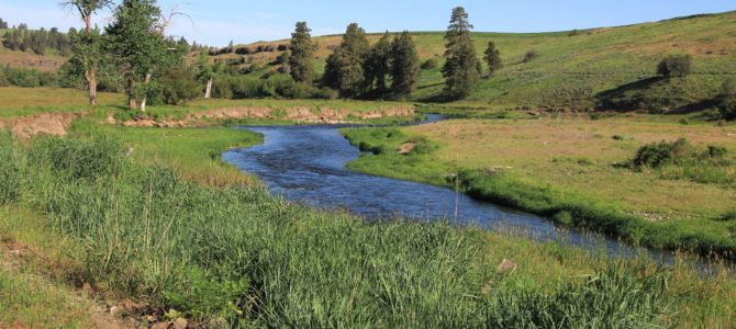 SE Washington's Palouse River Trail, May 2016