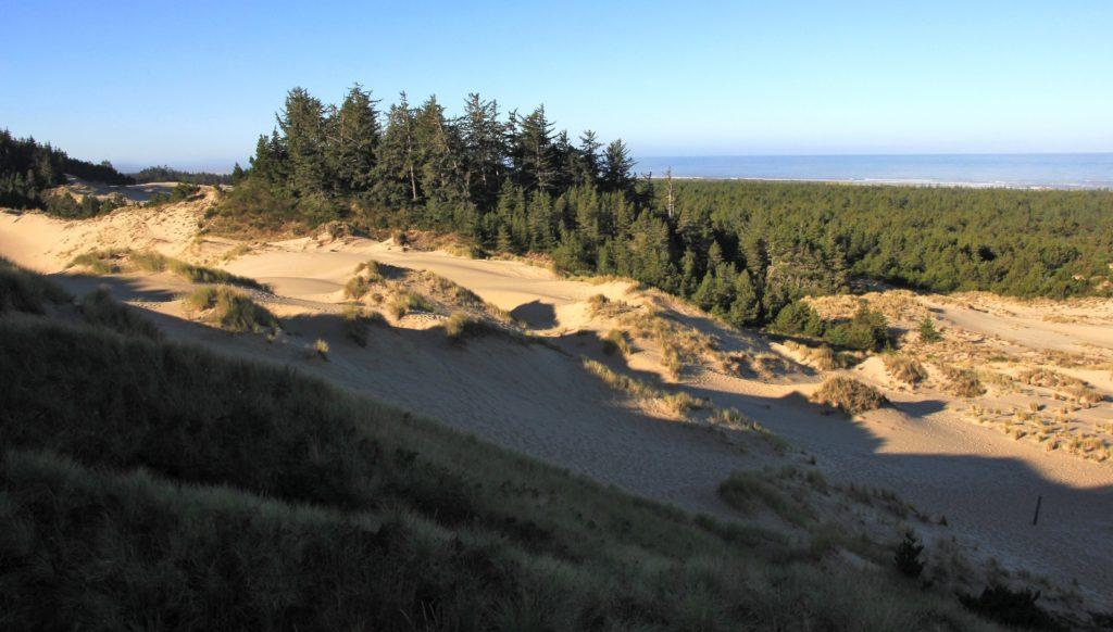 09-04-16-oregon-coast-shore-acres-3