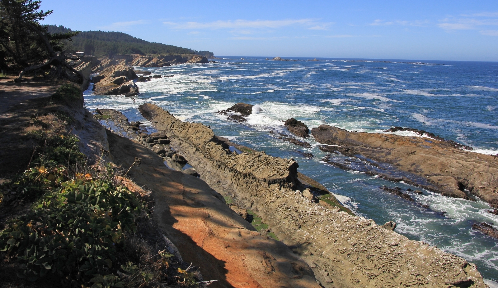 09-04-16-oregon-coast-shore-acres-55