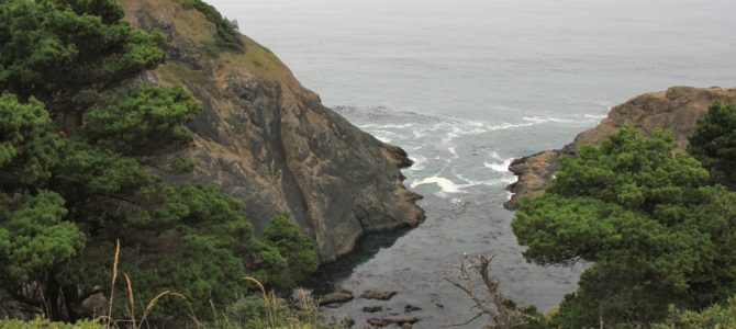 Oregon Coast: Port Orford Heads, Sept 2014
