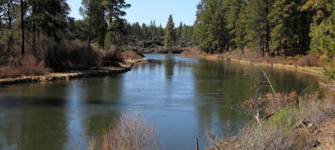 Central Oregon's Deschutes River: Dillon Falls, April 2018