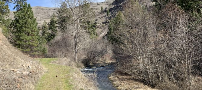 Adventure Log: April 1-7, 2019 (Asotin Slough, North Fork Asotin Creek, & Inside Our RV)